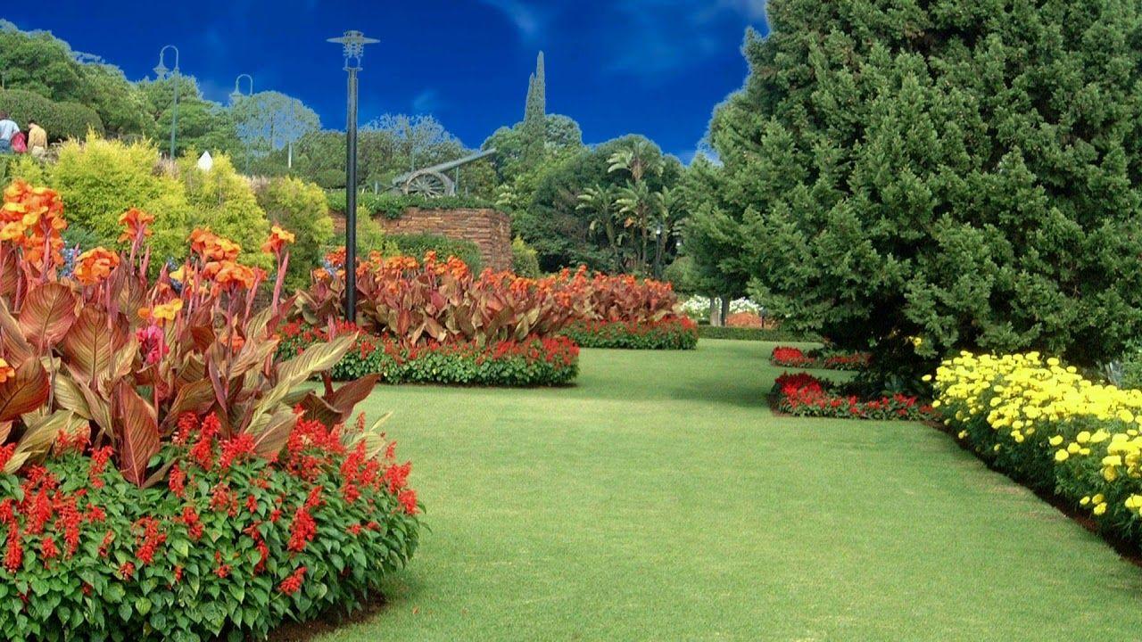 Nice Garden Background Video, Flowers Background Video