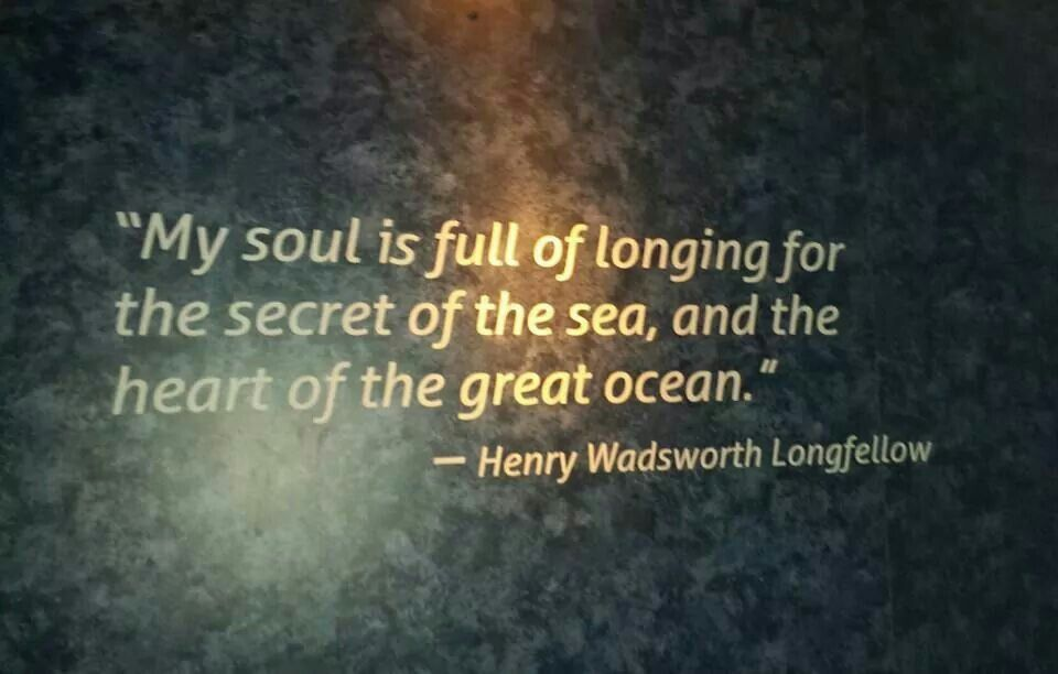 I Stumbled Across This Beautiful Quote Today At The Georgia Aquarium It Totally Sums Up Exactly How I Feel About The Ocean
