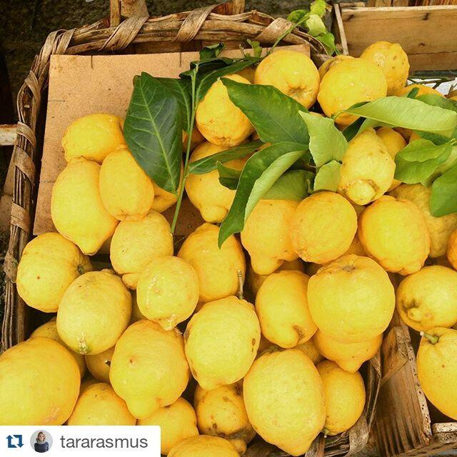 #Buongiorno limoni di #ischia photo: tararasmus