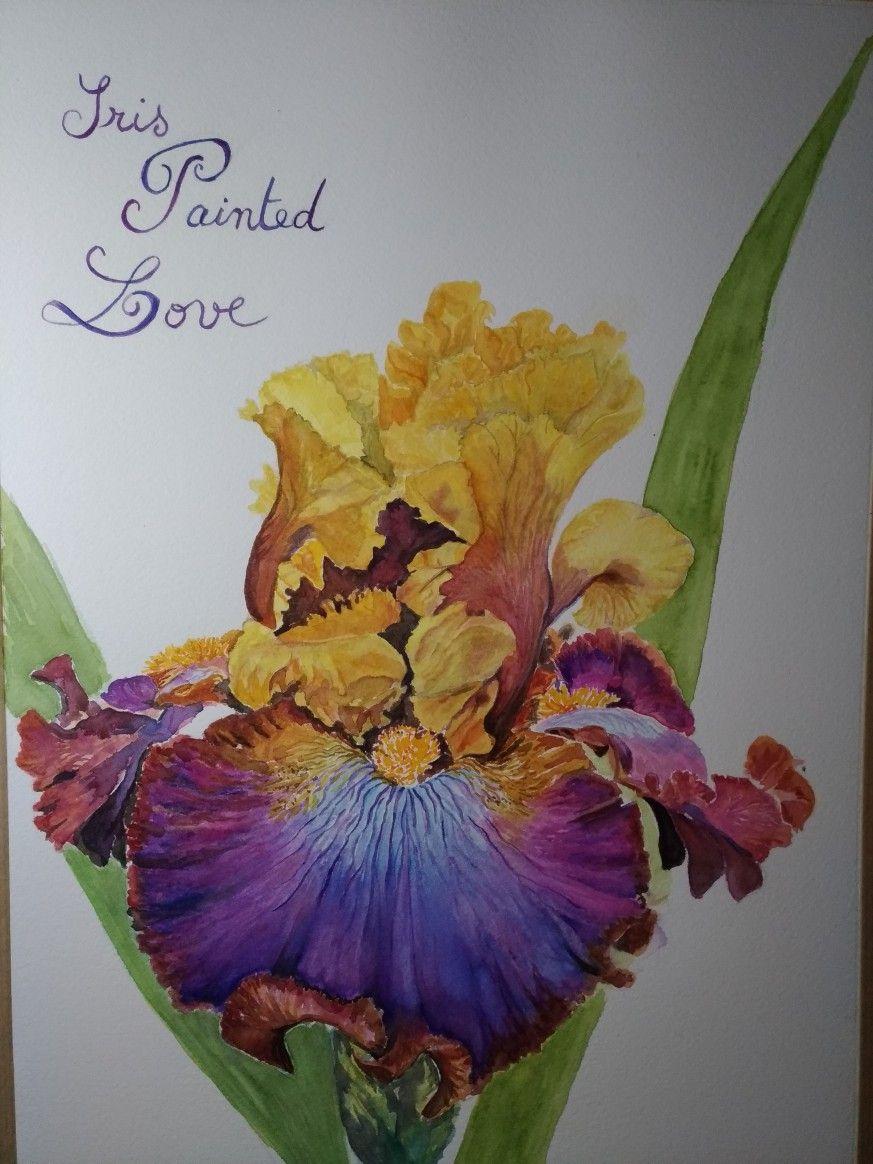 Iris Painted Love Nadine Desimages Papier Arches Grain Fin 300g