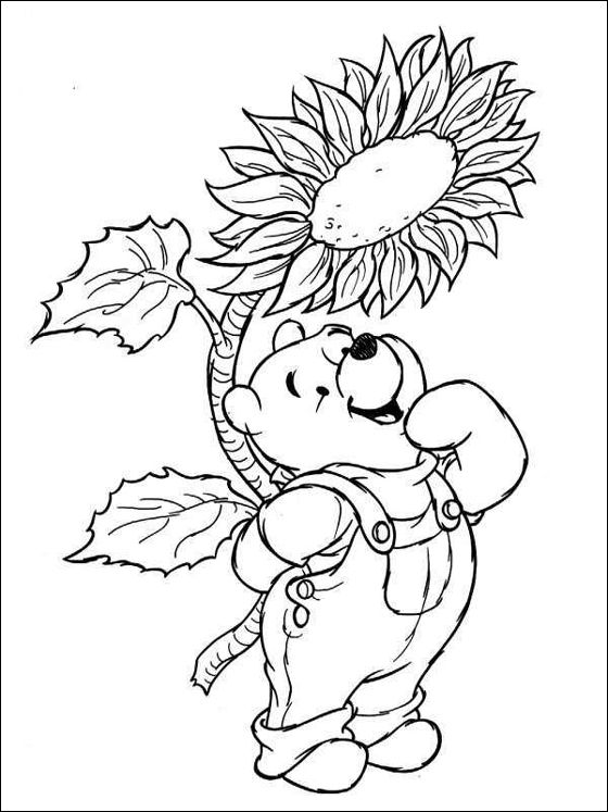 winnie the pooh with sunflower coloring page coloring pages
