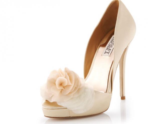 Champagne Wedding Shoes Cream Dresses