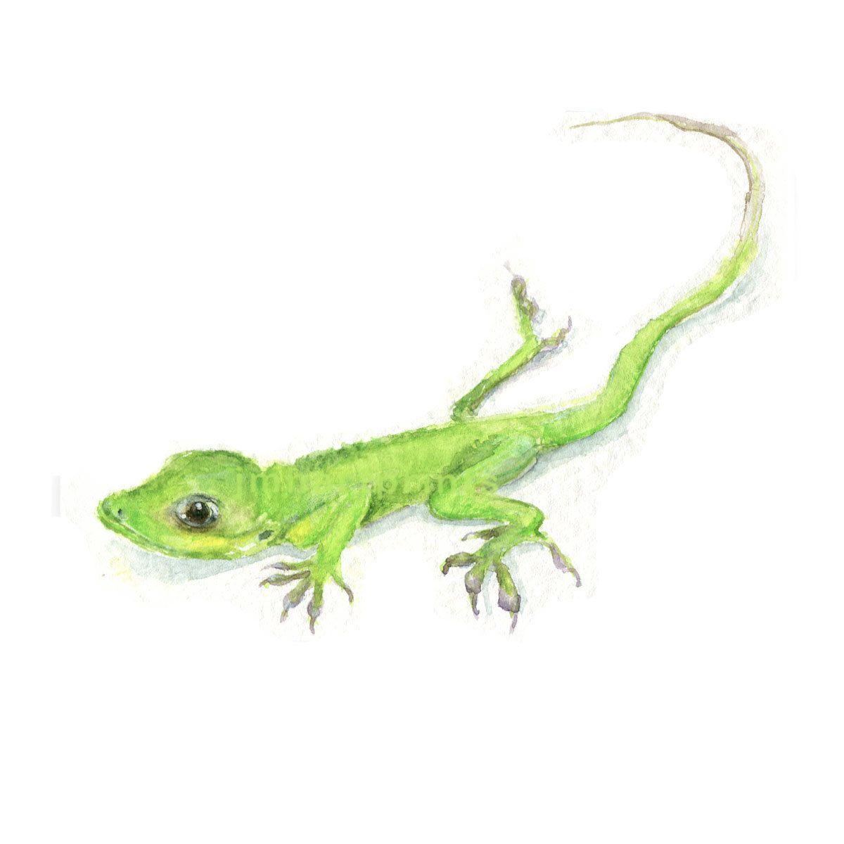 Colour Lizard Canvas Reptile Landscape Canvas Wall Art Picture Home Decor