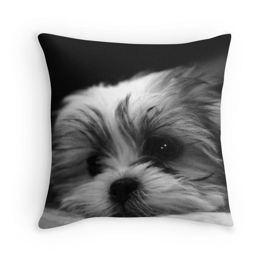 Shitzu Maltese Mix Puppy Throw Pillow Maltese Maltese Maltese