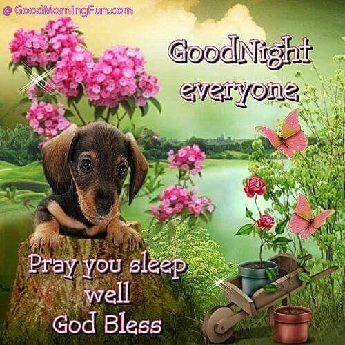 Good Night - Pray You Sleep Well Wishes