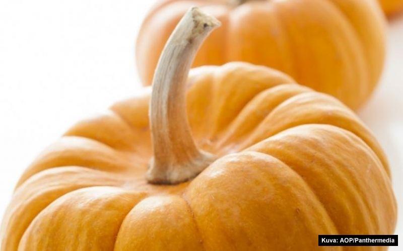 Kurpitsakeitto - pumpkin soup