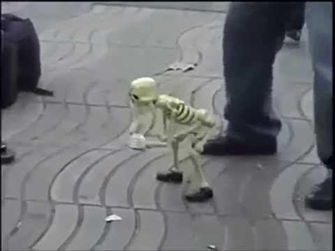 """Скелет ТанцуетPart3.под Легендарную""""Let's Twist Again""""▼ClickToShare▼"""