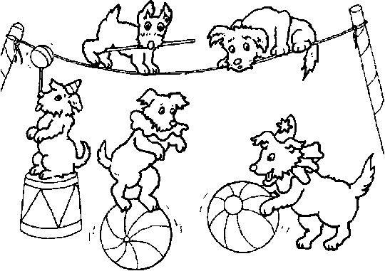 Circus coloring page printable Keep Healthy Eating Simple Circus - new circus coloring pages for preschool