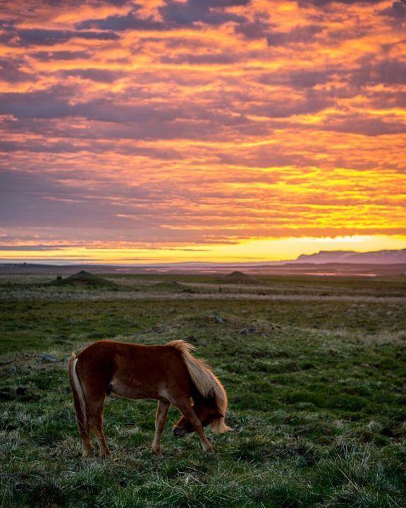 Where To Willie Beautiful Sunset Photo Instagram Photo