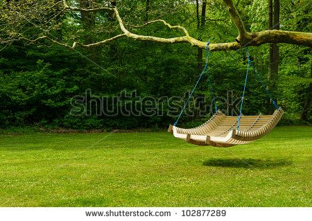 Swing Bench In Lush Garden Curved Swing Bench Hanging From The Bough Of A Tree In A Lush Garden With Woodland Backd Garden Seating Outdoor Bench Outdoor Trees