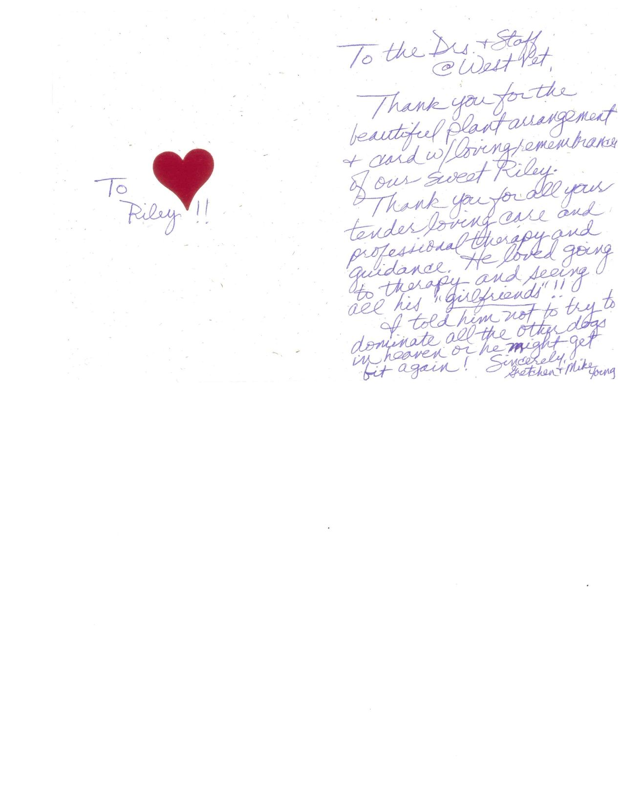 Letters From Clients | WestVet
