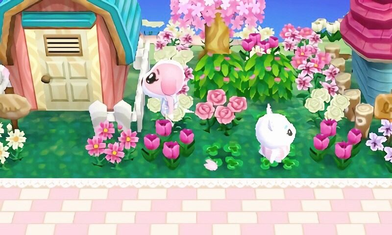 acnl blog 💗 town`s: primrose and Teacup💕   Animal crossing ...