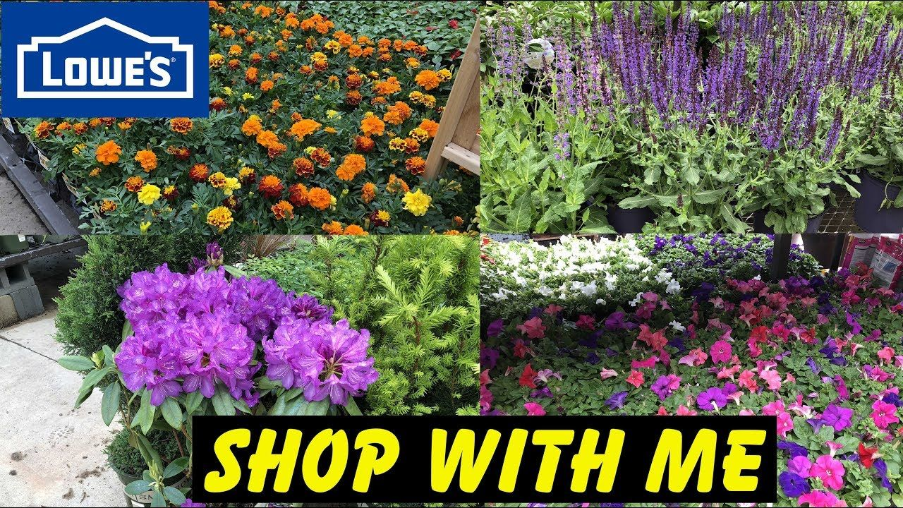 Pin By Kathy Collins On Garden Retail Displays With Images