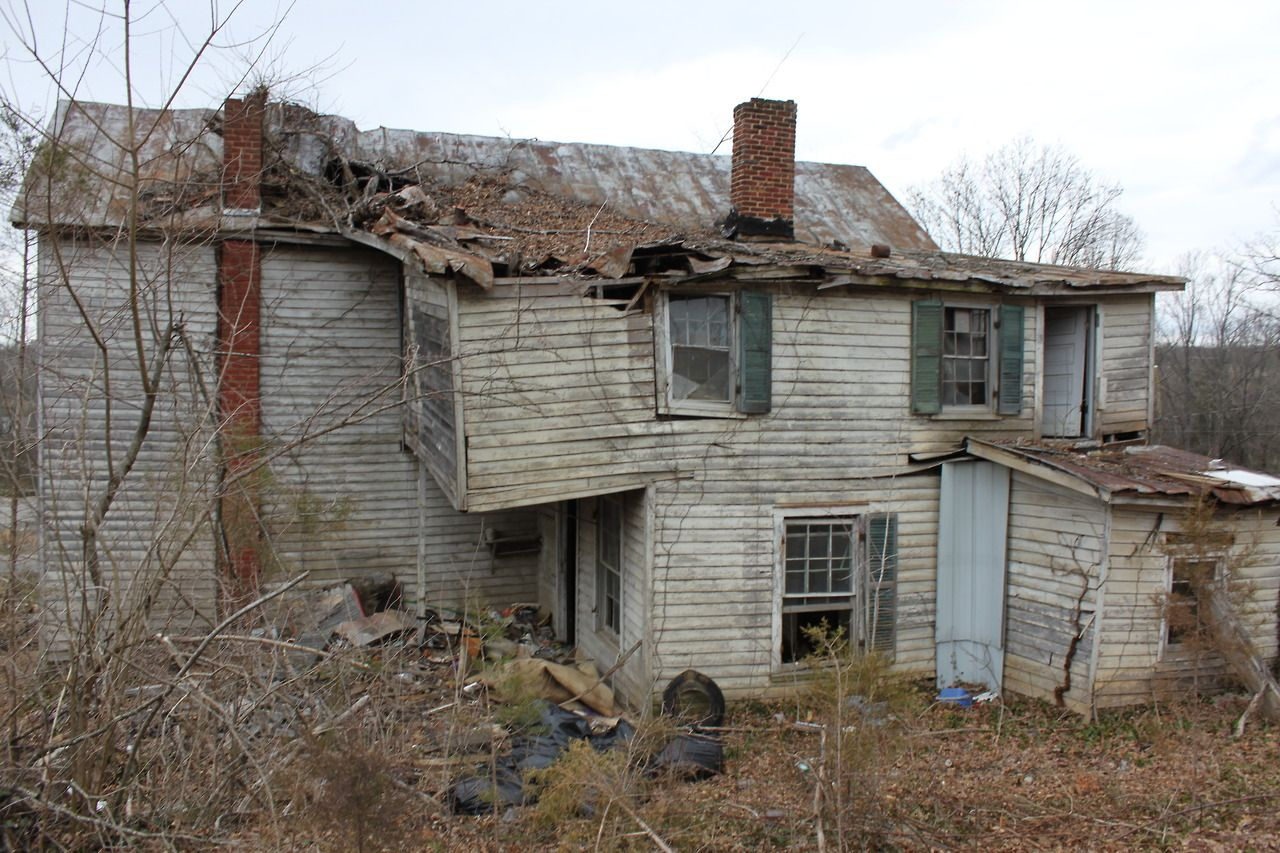 The dump house built in 1912 recently revealed after for Houses built in trees