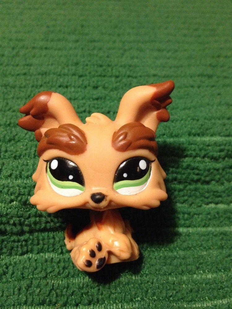 Littlest Pet Shop 1016 Dog Yorkie Tan Brown Green Eyes Lps