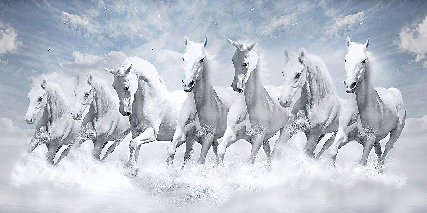 7 Horse Full Hd Wallpaper 1 Horse Wallpaper Horse Wall Art Canvases White Horse Painting