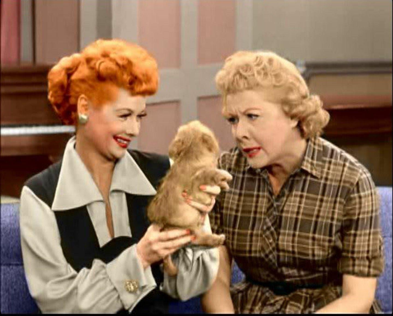 I Love Lucy | I love lucy, Sitcom, Book humor