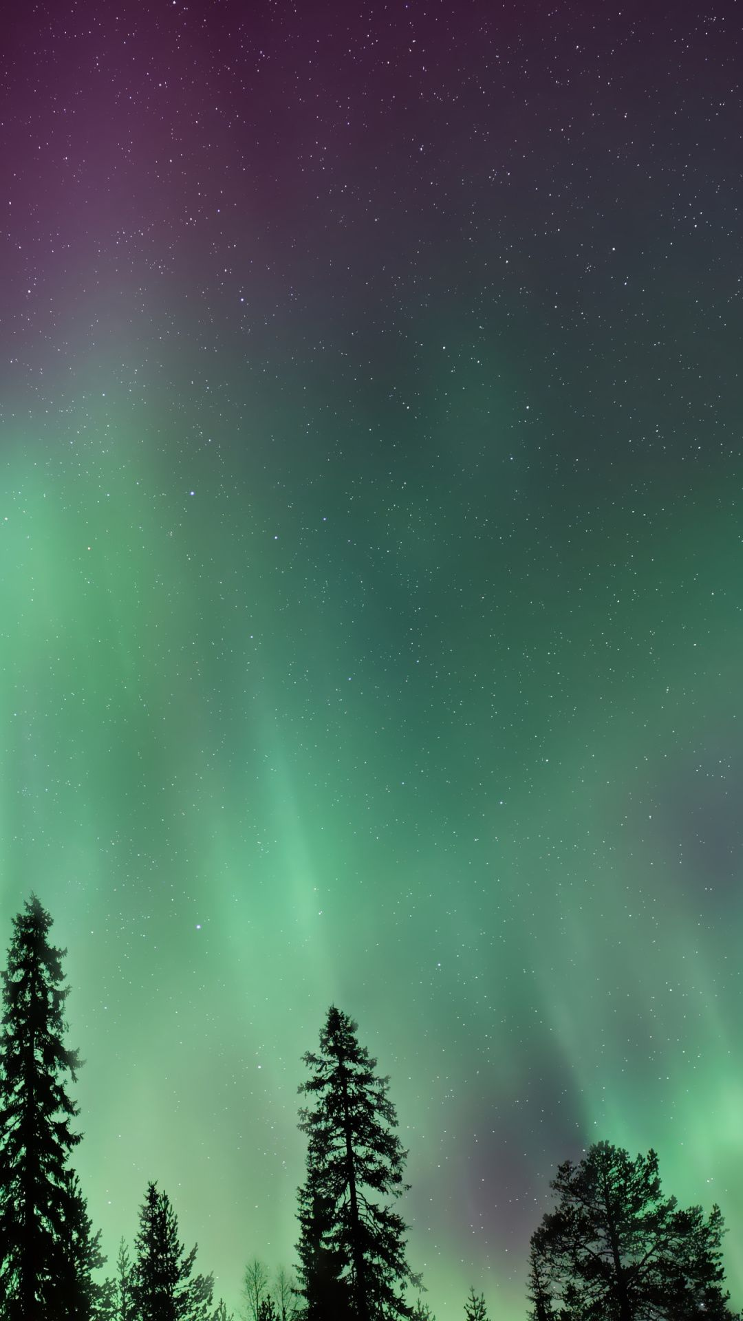 Northern Lights, Aurora Borealis, colorful, sky Wallpaper