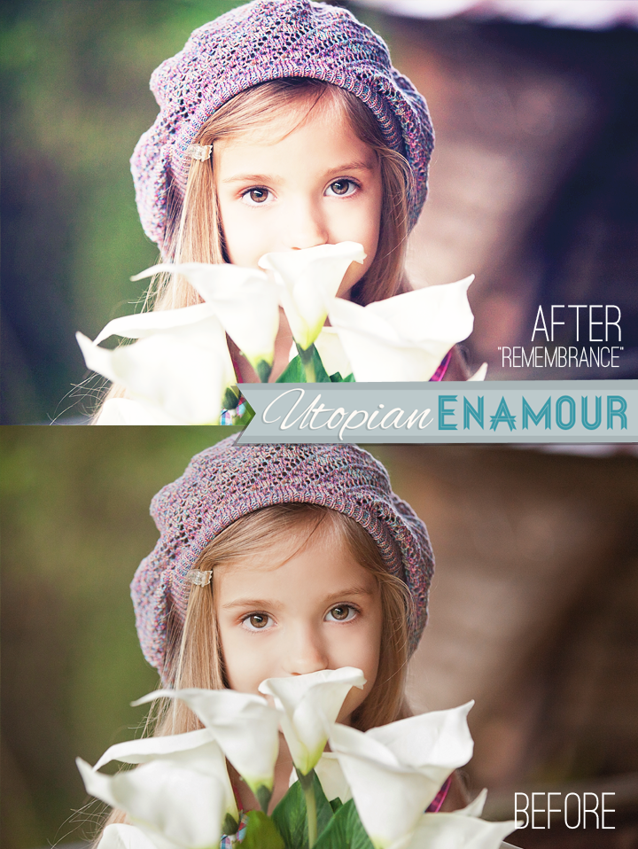 Mastering photoshop elements made easy training tutorial v. 7, 6.