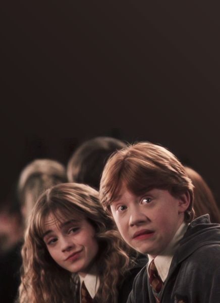 Hermione and Ron | Harry Potter and the Chamber of Secrets ...