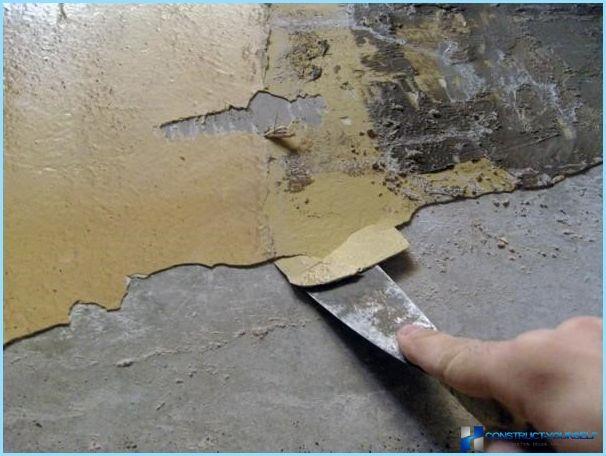 pittura murale decorativo con l'effetto di seta