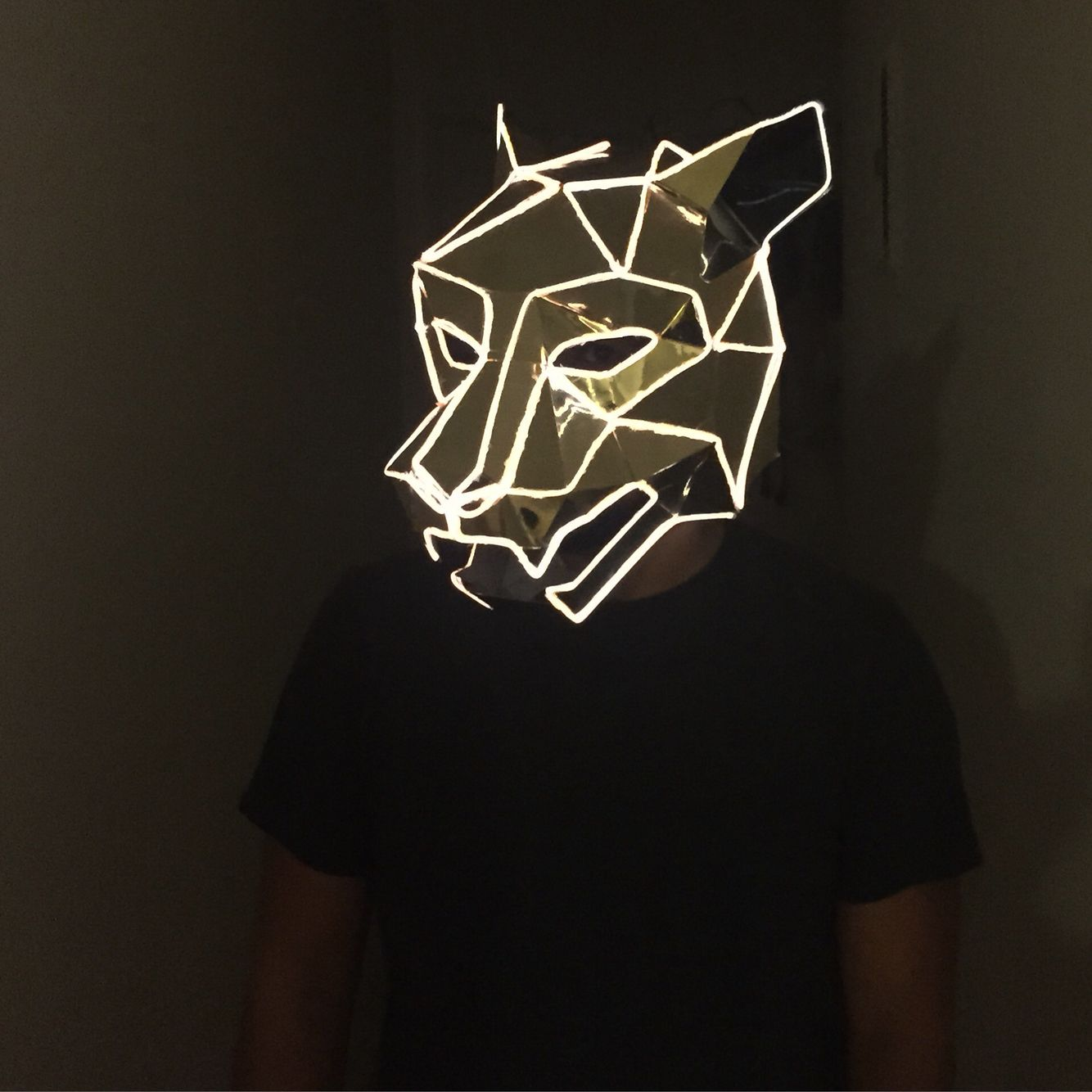 Wintercroft x WhoCaresWhyNot. Light up mask. El wire. Panther ...