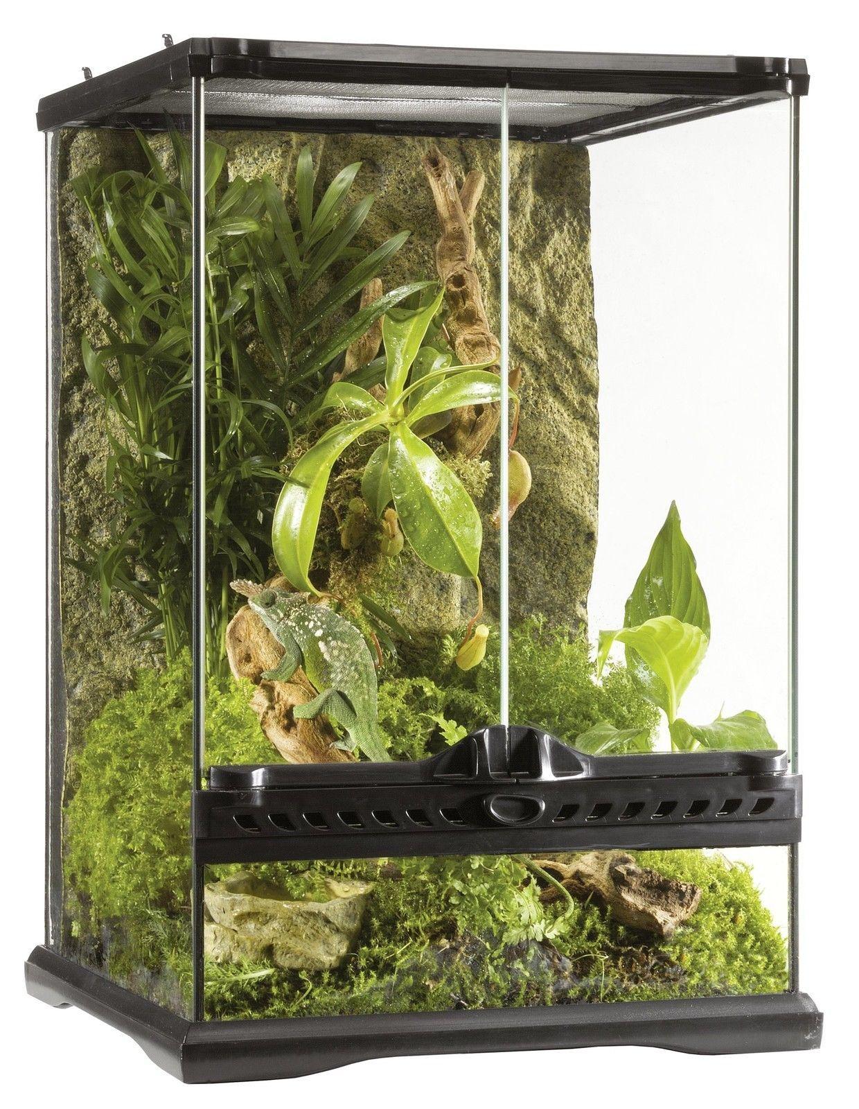 Reptile Glass Terrarium Frog Iguana Cage Snake Lizard Habitat Home