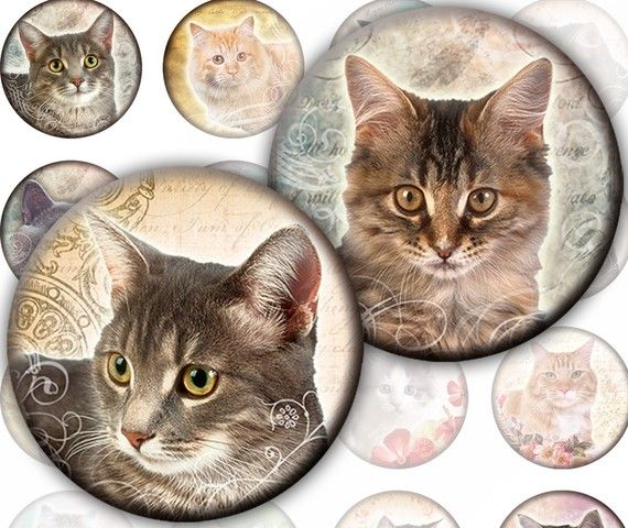 Vintage inspired Cats and kittens Karisagraphic digital collage sheet