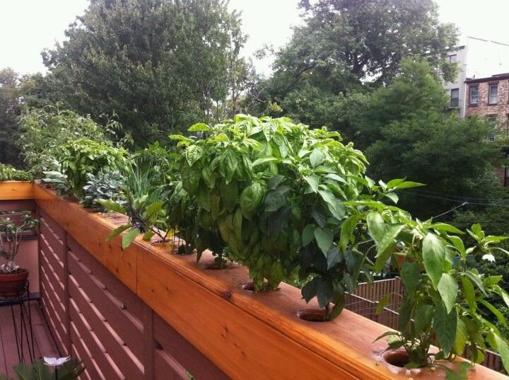 deck pinterest planters rail planter pin railing