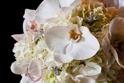 Orchids, hydrangeas with lots of sparkle