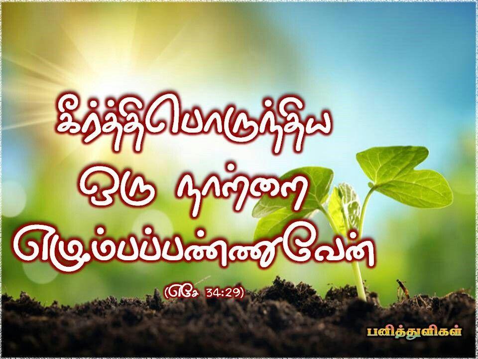 Tamil Bible Verse பன த த ள கள Tamil Bible Verse