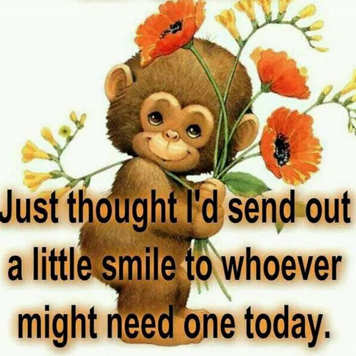 We All Need A Smile!!!
