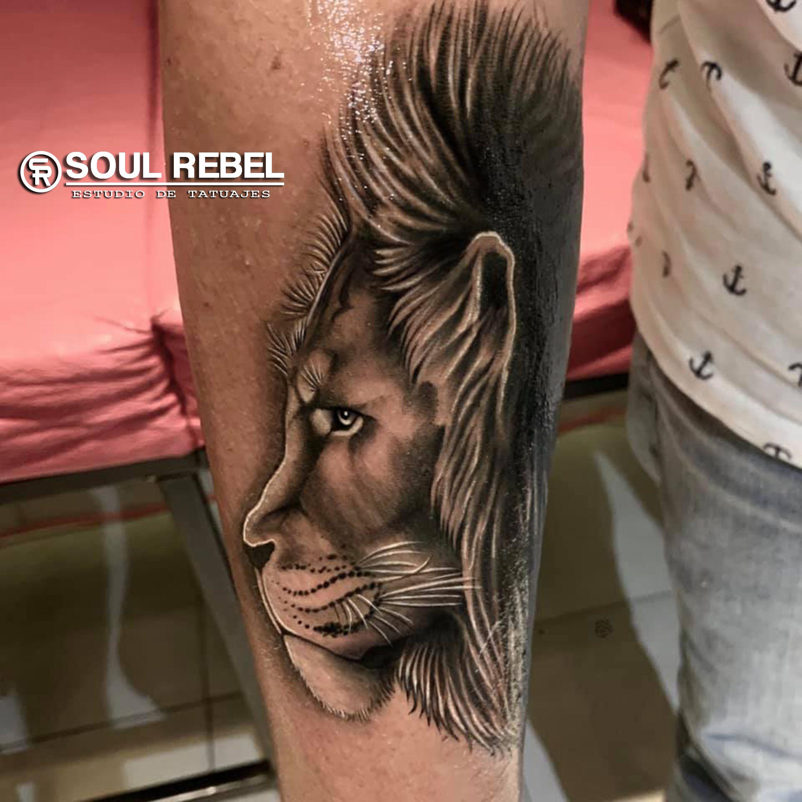 #tatuajeleon #liontattoo #tatuajerealismo #realismtattoo #tattooblckwork