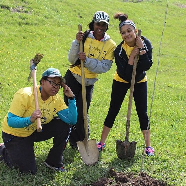 Planting trees and flowers for Beautify the Burg. From Alpha Gamma Xi Chapter at Frostburg State University
