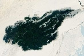 Holuhraun Lava Could Still Be Toasty Underneath : Image of the Day : NASA Earth Observatory