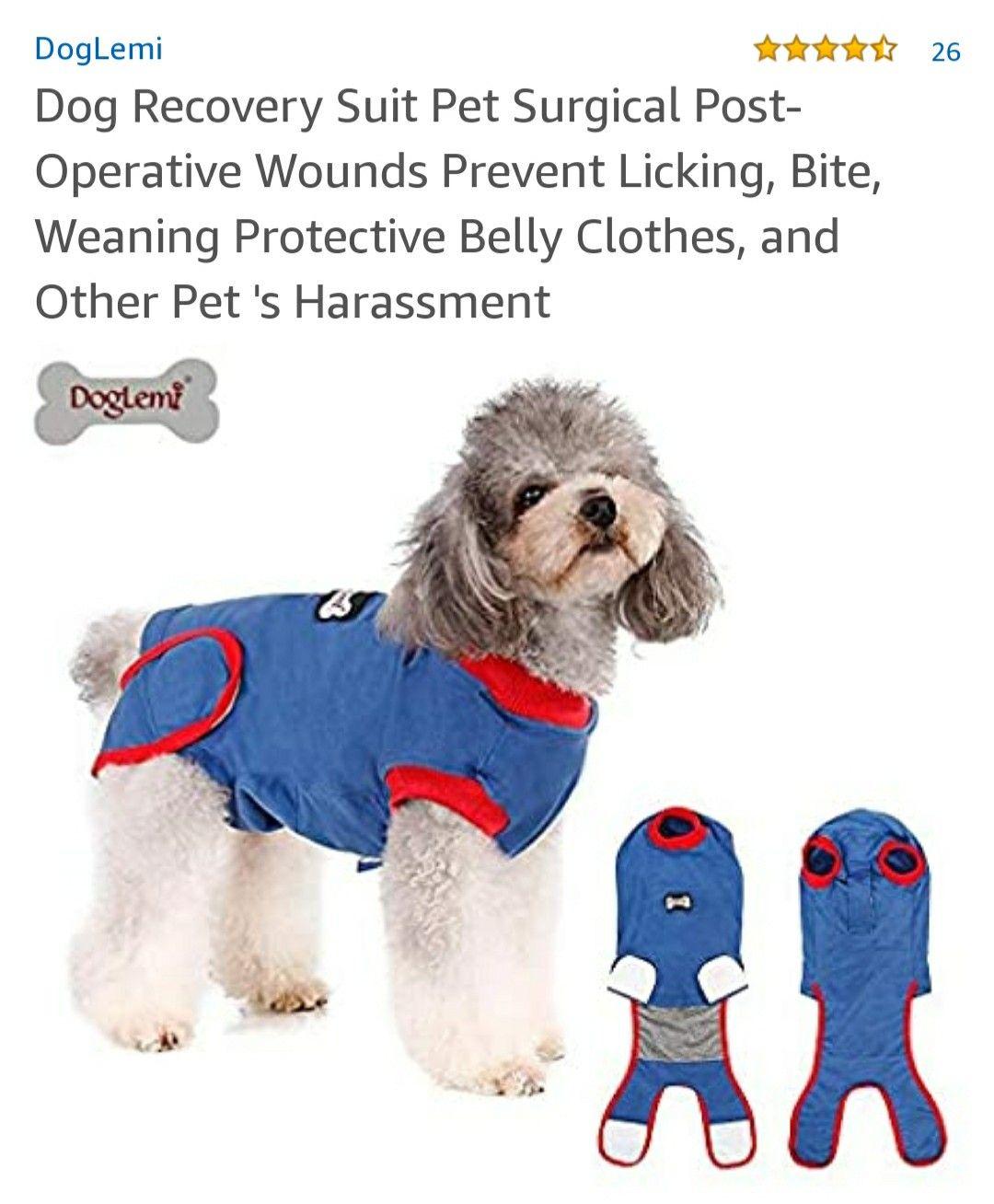 Dog cone alternatives in 2020 dog cone alternative dog