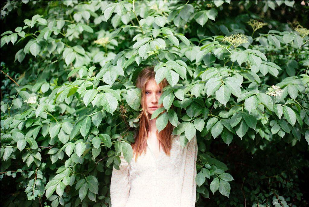 aphelia:    (by Lara Alegre)