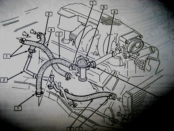 1982 Camaro Engine Wiring Diagram On 350 Tpi Wire Harness Diagram