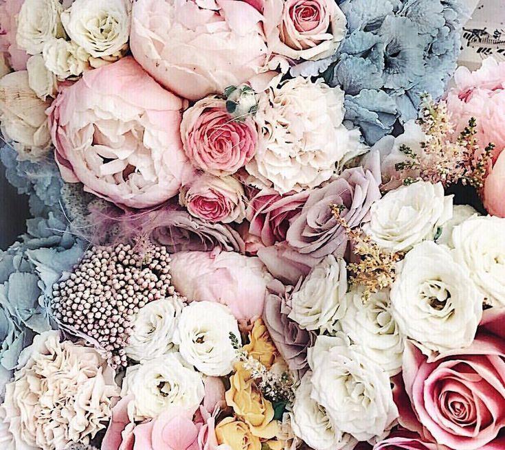 своей личной картинки для ватсапа цветы новомодные дежурных
