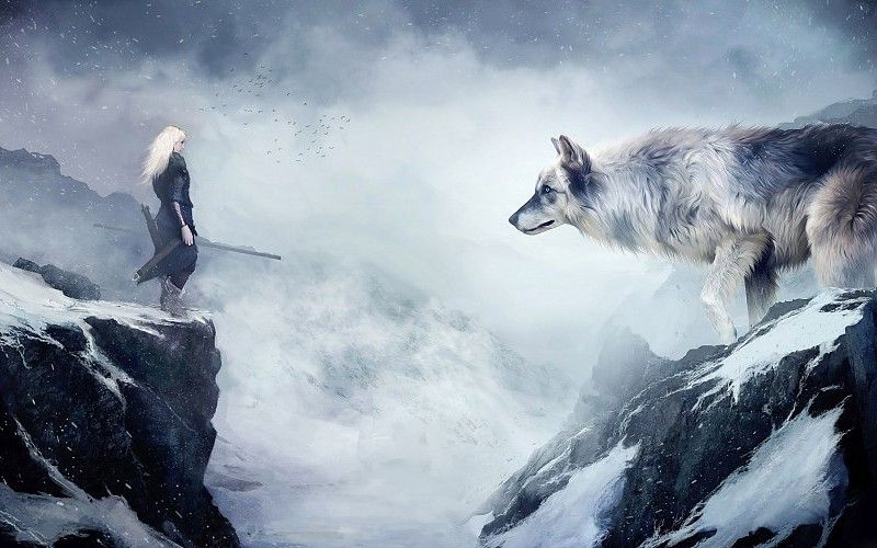 Giant Wolf Pesquisa Google Fantasy Wolf Wolf Wallpaper Winter Drawings 4k wallpaper for pc wolf