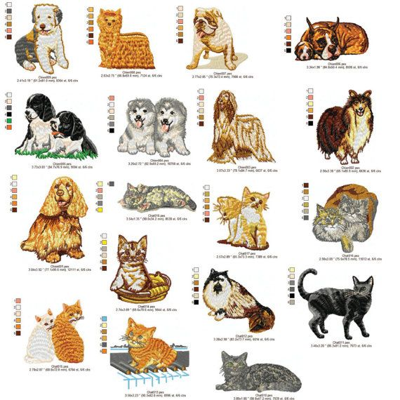 Dogs And Cats Machine Embroidery Design 4x4 Dst Exp Hus Jef