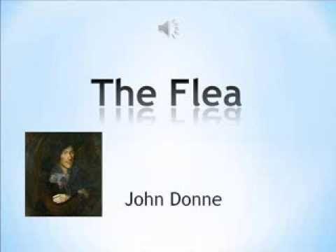 the flea john donne analysis
