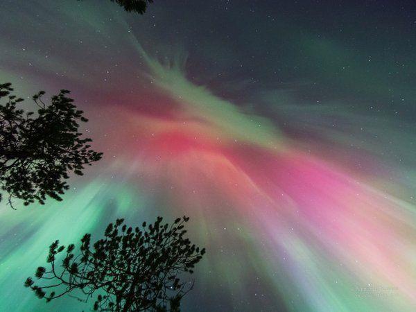 """Keraunos sur Twitter : """"Aurores très lumineuses également en #Russie la nuit dernière (à Strezhevoy) par Alexei Yakovlev #aurora https://t.co/jBsMgvnc5c"""""""