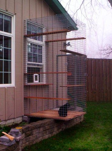 Outdoor Cat Enclosure Window Exit Cat Kennel Outdoor Cat Enclosure Outdoor Cat Kennel
