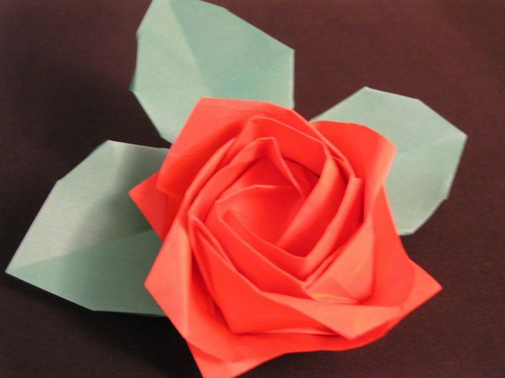 Different Types Of Pretty Origami Flowers Art And Crafts