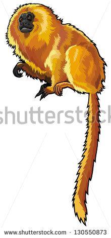 Monkey Stock-Vektorgrafiken & Clip Art-Vektorgrafiken | Shutterstock