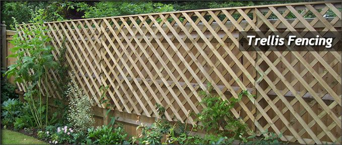 Trellis fencing great for filtering wind creating semi transparent