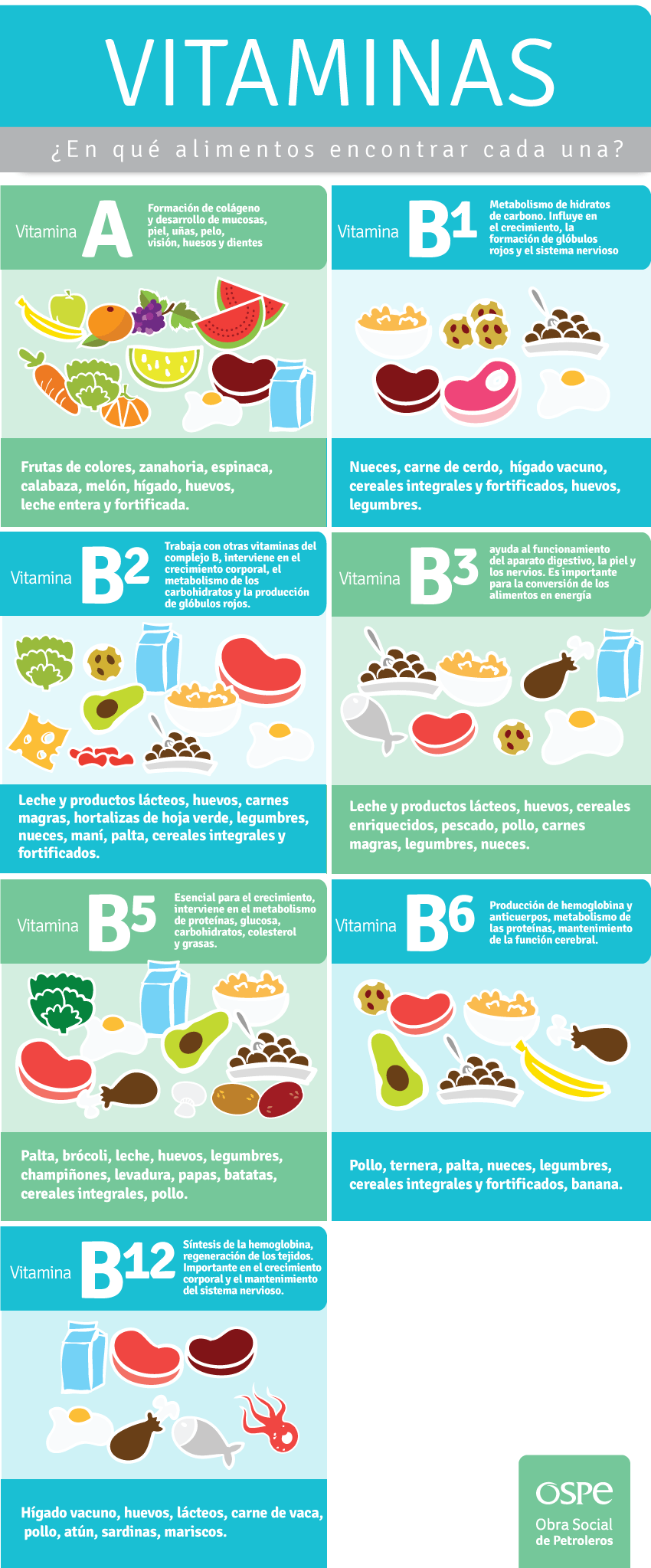 En qué alimentos encontrar cada vitamina? | Veggie | Pinterest ...
