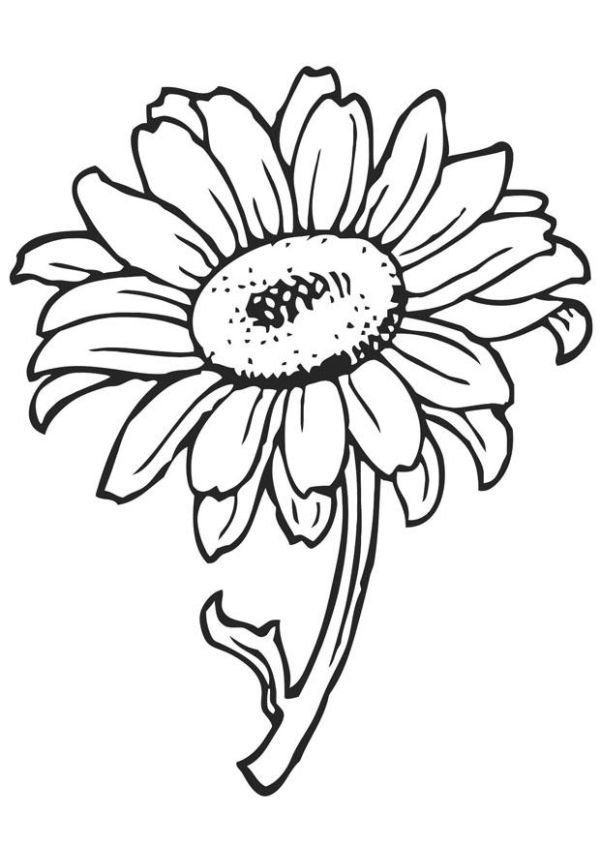 Free Sunflower Coloring Pages For Kids Printable Flower Coloring Pages Flower Coloring Pages Butterfly Coloring Page