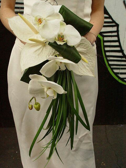 Bride S Lovely Contemporary Cascade Bouquet Arranged With White Anthurium White Phalaen Orchid Bouquet Wedding White Bridal Bouquet Tropical Wedding Bouquets